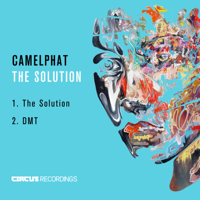 The Solution CamelPhat