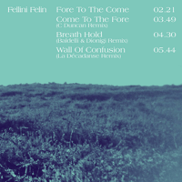 Breath Hold (Baldelli & Dionigi Remix) Fellini Félin