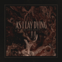 Free Download As I Lay Dying My Own Grave Mp3
