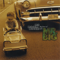 Wild World Mr. Big