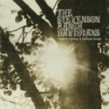 Free Download The Stevenson Ranch Davidians Better Day Mp3