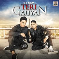 Teri Galiyan (feat. Tariq Khan (Legacy)) DJ Sam