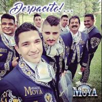Despacito El Mariachi Moya