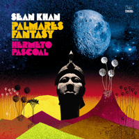 Your Way Not My Way (feat. Heidi Vogel) Sean Khan