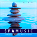 Free Download Spa Music Music For Spa and Massage Therapy Mp3