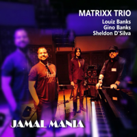 Lady In Blue Matrixx Trio - Louiz Banks, Sheldon D'Silva & Gino Banks