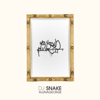 You Know You Like It DJ Snake & AlunaGeorge MP3