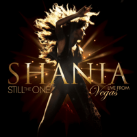 You're Still the One (Live) Shania Twain