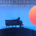 Free Download Bobby Caldwell What You Won't Do for Love Mp3
