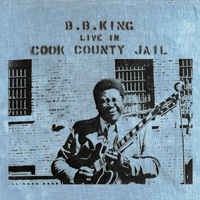 Please Accept My Love (Live In Cook County Jail/1970) B.B. King MP3