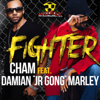 Fighter (feat. Damian