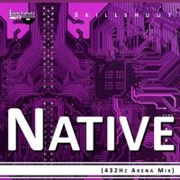 Native (432Hz Arena Mix) Skillshuut MP3