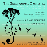 Carnival of the Animals: XIII. The Swan (arr. Blackford) BBC National Orchestra of Wales & Martyn Brabbins MP3
