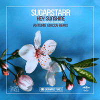 Hey Sunshine (feat. Alexander) [Antonio Giacca Remix] Sugarstarr