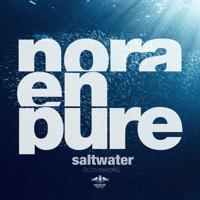 Saltwater (2015 Rework) Nora En Pure MP3