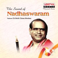 Sri Mahaganapathi - Atana - Aadi Dr. Sheik Chinna Moulana song