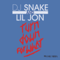 Free Download DJ Snake & Lil Jon Turn Down for What Mp3