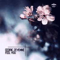 Feel You (Radio Edit) Cedric Zeyenne