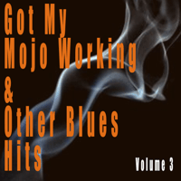 Got My Mojo Working Muddy Waters MP3