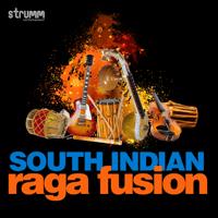 Manasa Sancharare - Sama - Adi (Instrumental) Phani Narayana & S. Jaykumar