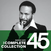 Inner City Blues (Make Me Wanna Holler) Marvin Gaye MP3