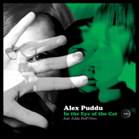 The Bull Alex Puddu MP3