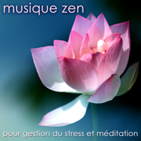 Sitar (World Music) Musique Zen Garden