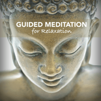 Feeling Relaxed Meditation Music
