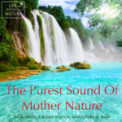 Free Download Life Sounds Nature Waking Up On a Farm Better Than Alarm Clock Mp3