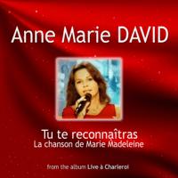Tu Te Reconnaîtras Anne-Marie David