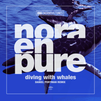 Diving with Whales (Daniel Portman Remix) Nora En Pure MP3