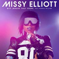 WTF (Where They From) [feat. Pharrell Williams] Missy Elliott