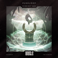 Kula Kula (The Widdler Remix) Pushloop MP3