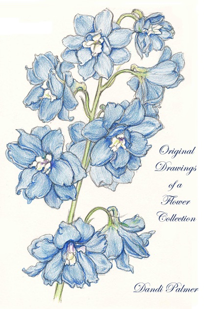 Original Drawings of a Flower Collection by Dandi Palmer on Apple