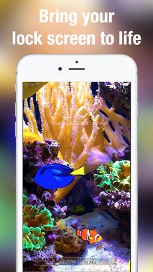 Apple Clownfish Wallpaper Iphone X Aquarium Dynamic Wallpapers On The App Store