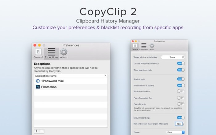 5_CopyClip_2_Clipboard_Manager.jpg