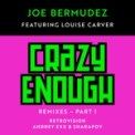 Free Download Joe Bermudez Crazy Enough (feat. Louise Carver) [RetroVision Remix Radio Edit] Mp3