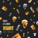 Free Download Bailo & Lit Lords Want (feat. Tima Dee) Mp3