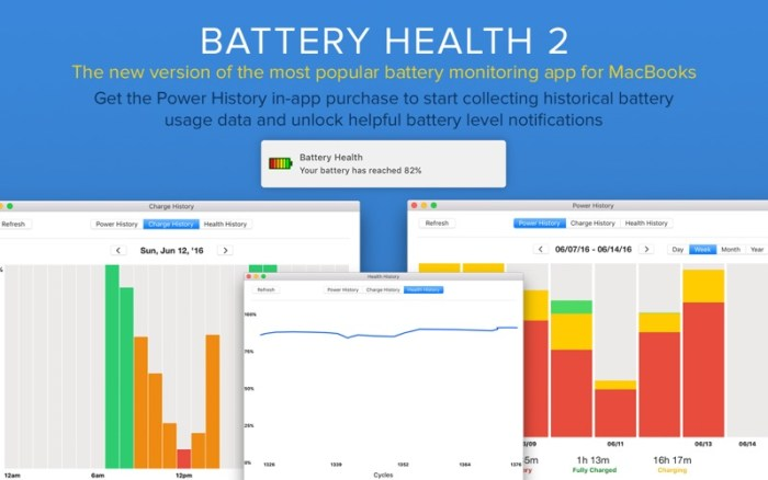3_Battery_Health_2_Stats_Info.jpg