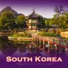 Mohd Abdul Ahmed - South Korea Tour Guide アートワーク