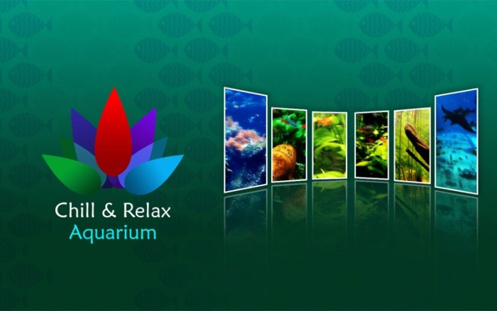 1_Chill_Relax_Aquarium_Cay_Fish_Tank_HD_Video.jpg