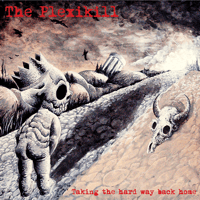 Back From The Grave The Plexikill song
