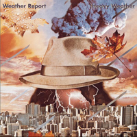 Harlequin Weather Report