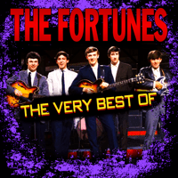 You've Got Your Troubles The Fortunes MP3