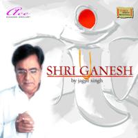 Vakratundaahakaya Prathameshwara Ganadheeshwara Jagjit Singh song