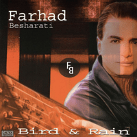 When I Dream At Night Farhad Besharati song