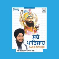 Tudh Sabh Kich Mainu Bhai Amarjit Singh