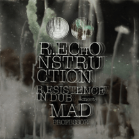 R.Econsider (feat. Tippa Irie) [Anything You Do] R.esistence in dub & Mad Professor