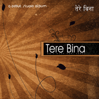 Tere Bina (feat. Sam Alex) The Last Bridge