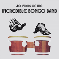 Apache (Grandmaster Flash Mix) Incredible Bongo Band